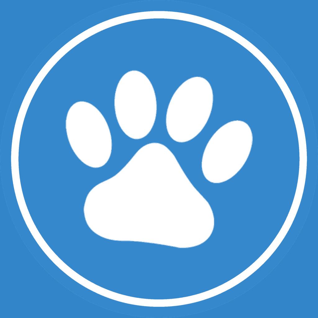 Seguro para Animais de Estimação Seguro para Cão e Gato